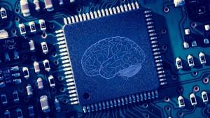 Brain printed