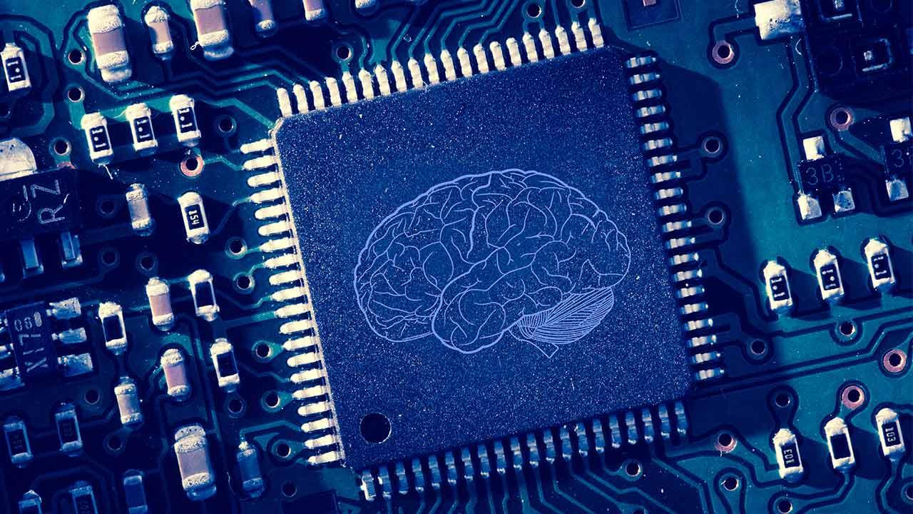 Brain printed Shutterstock wavebreakmedia