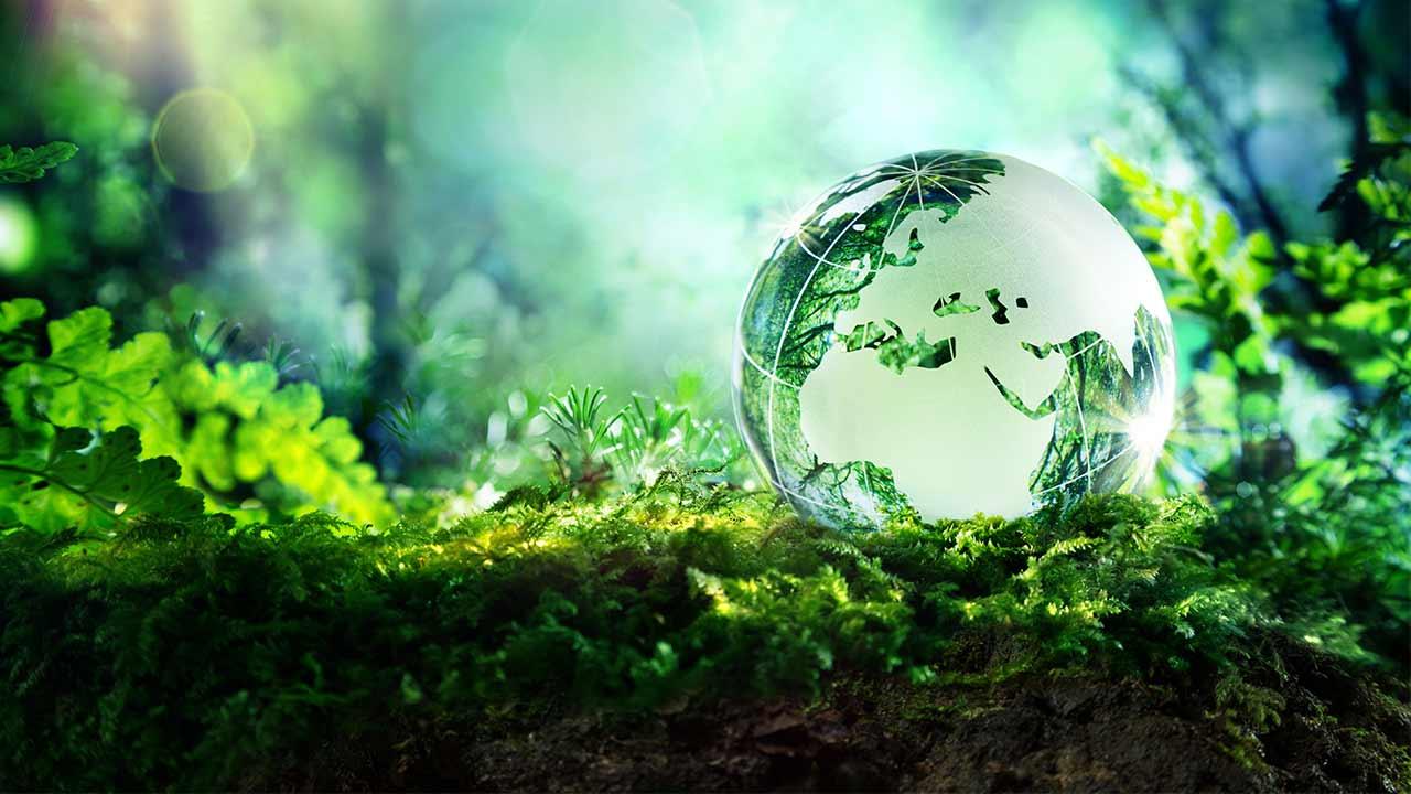 Umwelt Erde Natur shutterstock