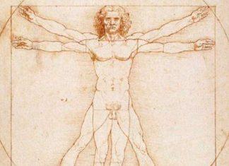 Vitruvianischer-Mensch-640x393px