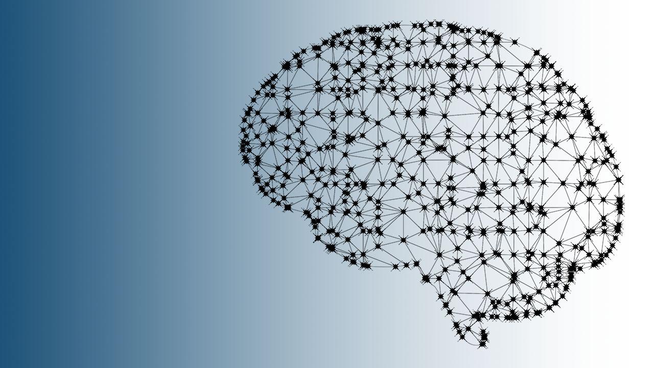 pixabay GDJ Gehirn brain Vernetzung Digitalisierung
