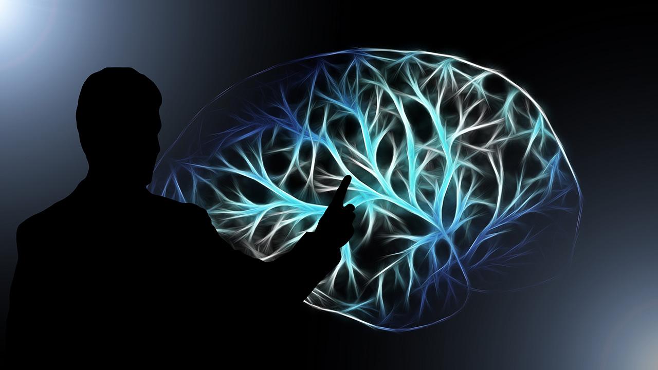 pixabay Geralt Gehirn Vernetzung