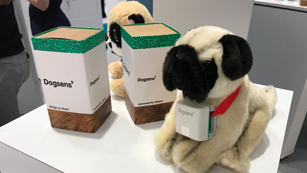Im öffentlichen Beta-Test: Dogsens von Telefónica NEXT. Foto: MOG
